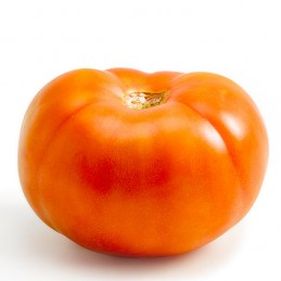 Salad Tomatoes Big x 4