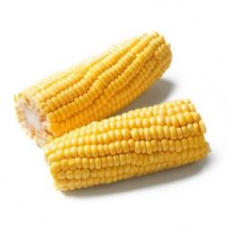 Corn on the Cob x 2